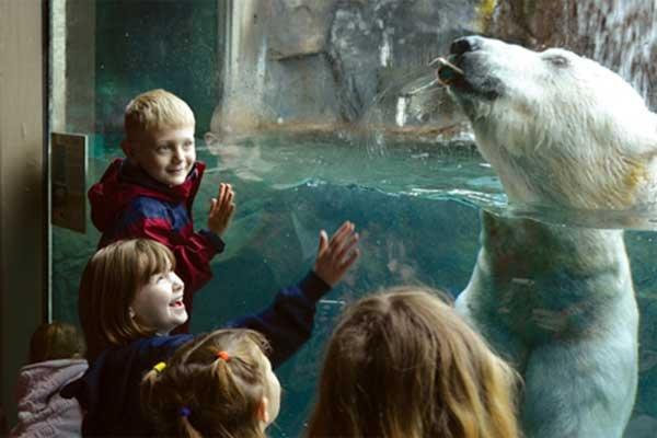 Seneca Park Zoo Fall-Winter