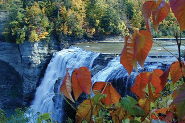Letchworth Fall foliage